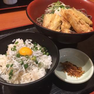 冷やしごぼう天おろし蕎麦セット(素材屋 伏見店 (ソザイヤフシミテン))