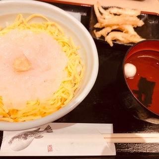 白えび刺身丼(白えび亭 東京駅店)