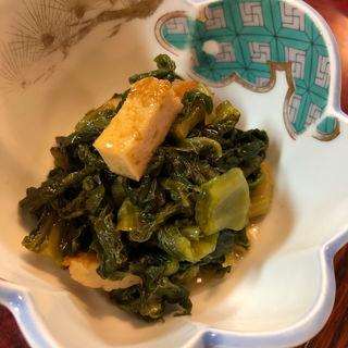 かつお菜煮(風来坊 )