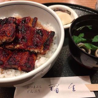 うなぎ丼(どんぶり稲生 栄町ビル店 )