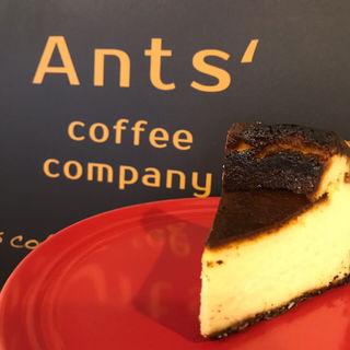 バスクチーズケーキ(Ants' coffee company (アンツ コーヒー カンパニー))