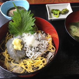 しらす二色丼(地魚料理 漁師の店 池田丸)
