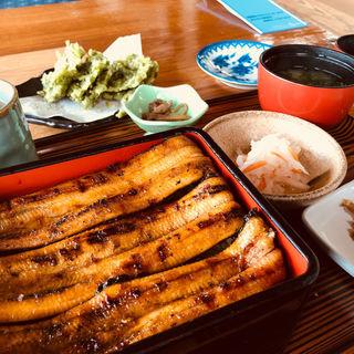 うなぎの蒲焼定食(天然)