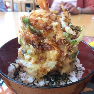 かき揚げ定食(北前船蕎麦街道 倉吉店 )