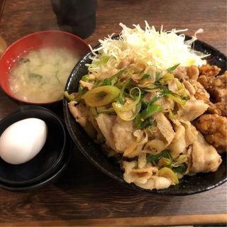 合盛り丼 肉増し(伝説のすた丼屋 お茶の水店 )