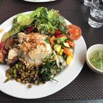 野菜で世界を旅するランチプレート