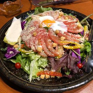 濃厚チーズのシーザーサラダ (チーズタッカルビ&個室 遥 梅田店)