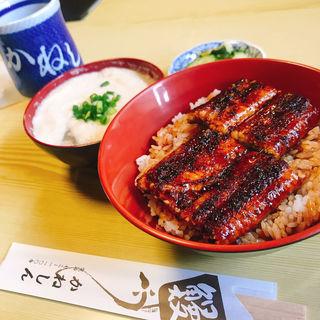 ウナギ丼並(かねしんうなぎ )