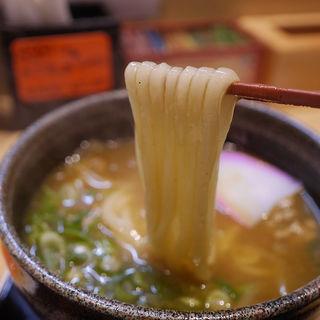 カレーうどん(自家製麺 うどん 屋島)