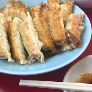 焼き餃子(宇都宮みんみん 駅東口店 )