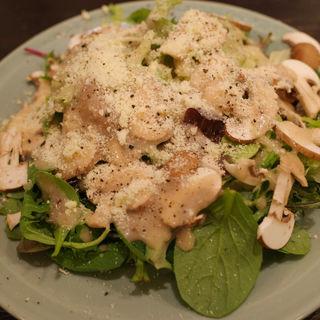 フレッシュマッシュルームのサラダ(伊勢山の洋食と自然派ワイン パーラーペコペコ)