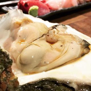 岩牡蠣(かがやき)