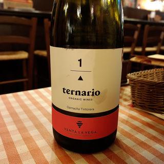 ternario(バル ポルティージョ デ サルイアモール)