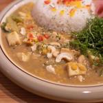 厚あげと小松菜の豆カレー+オーガニックパクチー