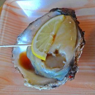 岩牡蠣(菅原鮮魚 )
