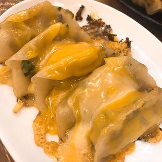 チーズ餃子(磯丸水産 神田今川橋店 )