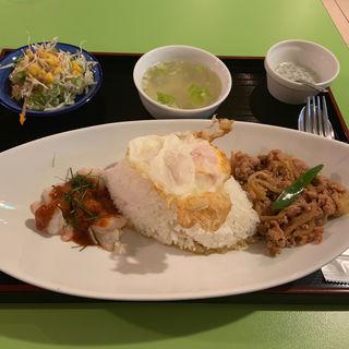 鶏肉バジル炒め&海老のレッドカレー2品盛合せ(タイコウ )