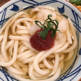 梅おろしうどん(丸亀製麺 米沢店)