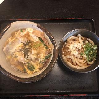 ふじどんぶり(ふじきち)