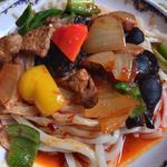タリム特上あんかけ麺(手打ち麺)(中)