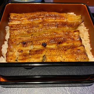 ■うな重蒲焼御飯■特製大丼(宮川本廛 三田店  (みやがわほんてん))