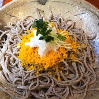 からすみ蕎麦(東京 土山人 (とうきょう どさんじん))