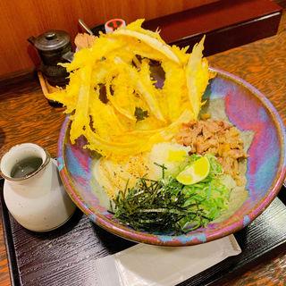 ごぼう天ぶっかけ(うどん屋麺之介 大阪店 )