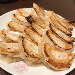 焼き餃子(春来 )