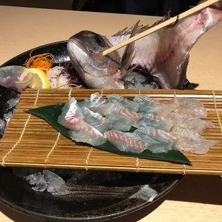 真鯛刺身(釣船茶屋 ざうお 新宿店 (ツリブネヂャヤザウオ))