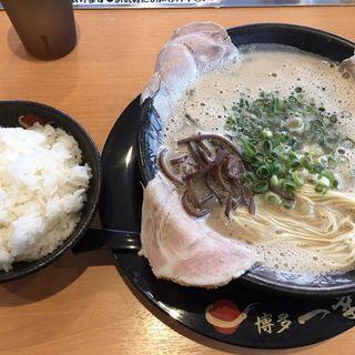 チャーシューメン・ご飯(一幸舎 空港南店)