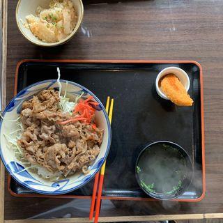 牛丼(南風 どなん )