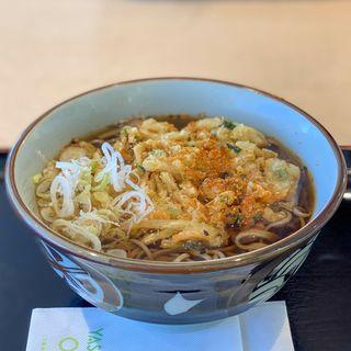 天ぷらそば(矢板北パーキングエリア(下り線)食堂 )