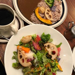 グリーンサラダとカレーとコーヒー(珈琲新鮮館)