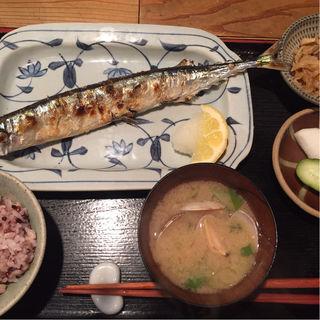 新サンマ塩焼(美松 )