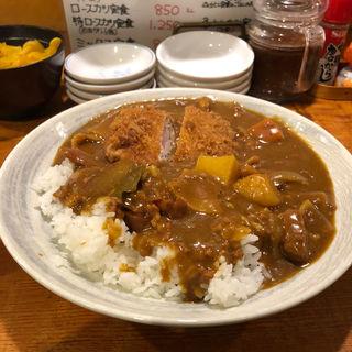 ヒレカツカレー(てっ平)