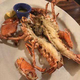 ロブスターテールの黄金焼きジューシィカットステーキ(パンorライス)(レッドロブスター 上板橋店 (Red Lobster))