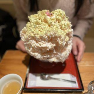 うぐいす桜(ひみつ堂 )