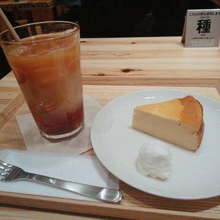 チーズケーキ(カフェ&ミール ムジ 新宿 (Cafe&Meal MUJI))