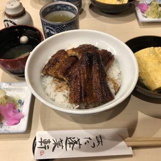 上鰻丼(あつた蓬莱軒 神宮店 (あつたほうらいけん))