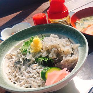 しらすハーフ丼セット(魚見亭)