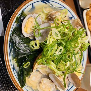 あさりうどん(丸亀製麺 日比谷帝劇ビル店 )