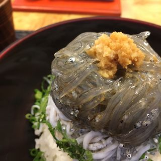 生しらす丼(鎌倉 秋本)