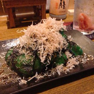 焼ピーマンのじゃこポン酢(ロヂウラ)