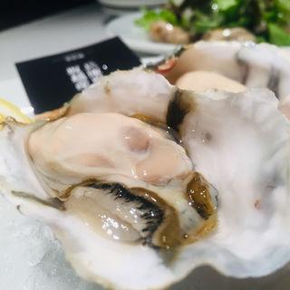 牡蠣づくしコース(ガンボ&オイスターバー 横浜そごう店 (GUMBO AND OYSTER BAR))