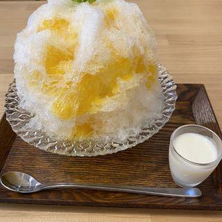 マンゴーみぞれ(mizoreya)