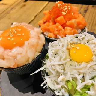 三色ミニ丼(令和ホルモン)
