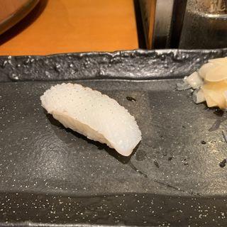 赤イカ(TAIZUSHI (タイズシ 【旧店名】すしの利行))