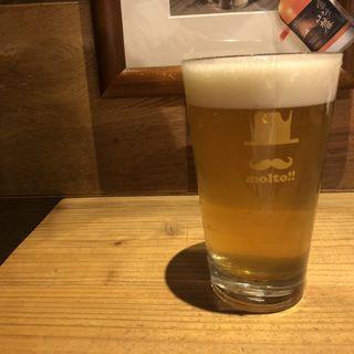 ベルジャン駒ヶ岳(南信州ビール)(ビアスタンドモルト (BEER STAND molto))