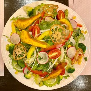 モリモリ彩りサラダ