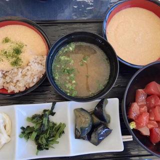 お昼の食べ放題(浅草むぎとろ本店)